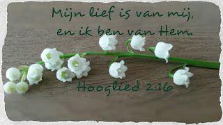 Good Morning Girls NEDERLAND: Hooglied 2