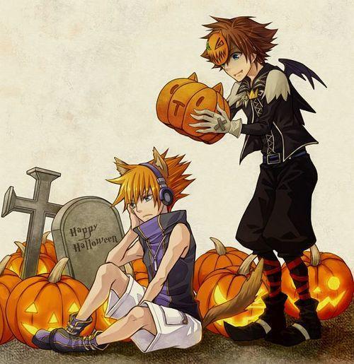 Sora and Neku Kingdom Hearts: Dream Drop Distance  Kingdom Hearts (Sora) and The World Ends With You (Neku)