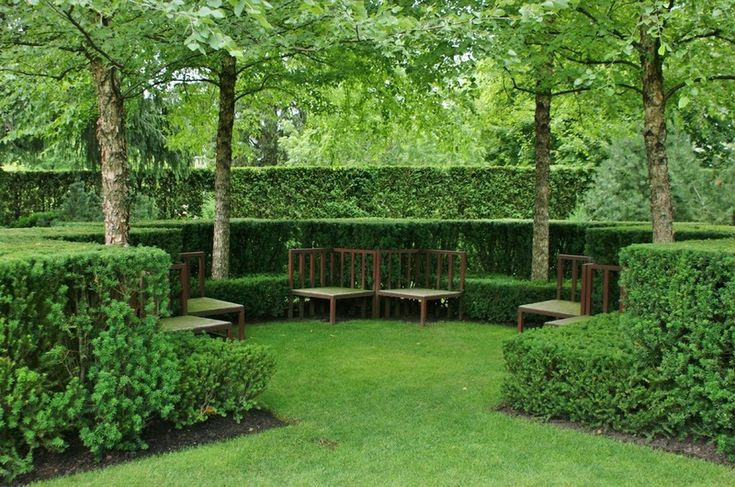 Take the idea of an outdoor room to the next level by planting a tall hedgerow to form the walls and place benches in the room.