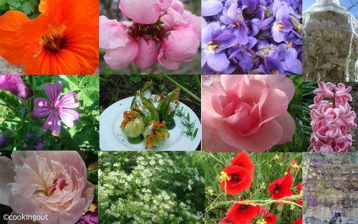 Voici une liste de 42 fleurs comestibles à déguster L'utilisation des fleurs dans les plats cuisinés remonte à des milliers d'années chez les Chinois, Grecs