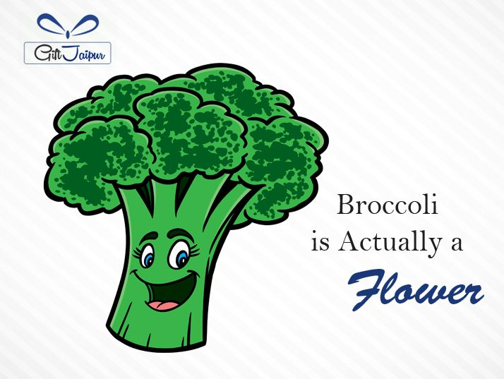 Interesting Fact about #Broccoli