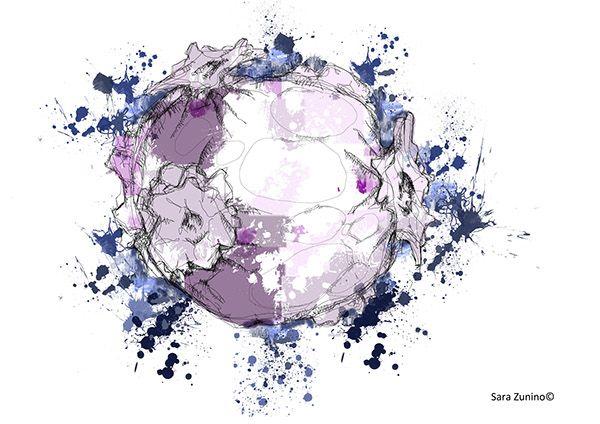 Digital drawing on Behance Scoppio digital drawing 2013
