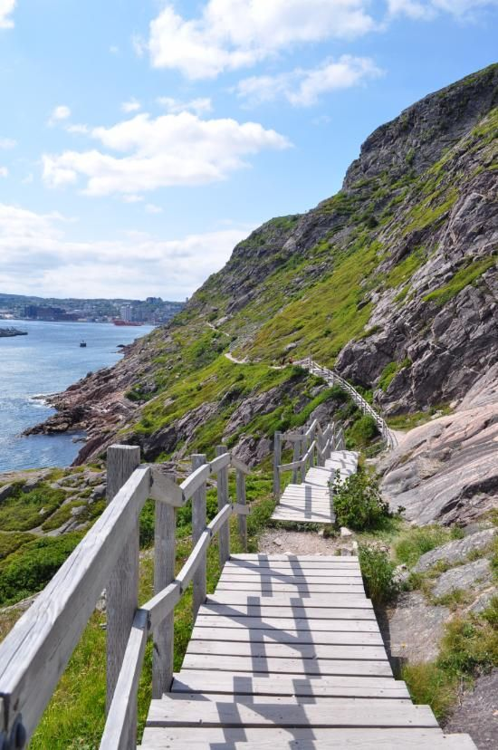 St. John's Tourism: TripAdvisor has 26,884 reviews of St. John's Hotels, Attractions, and Restaurants making it your best St. John's resource.