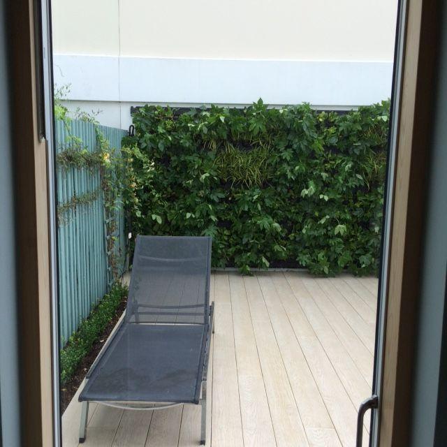 Courtyard green wall