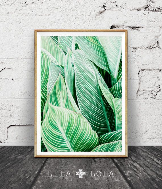 Tropical Leaf Print, Tropical Art, Plant Print, Tropical Wall Art Decor, Printable Art, Green Stripes, Plant Photography, Green Leaves Decor
