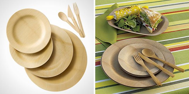 Biodegradable Bamboo Picnic Set | 15 Things You Must Pack for an Awesome Summer Picnic