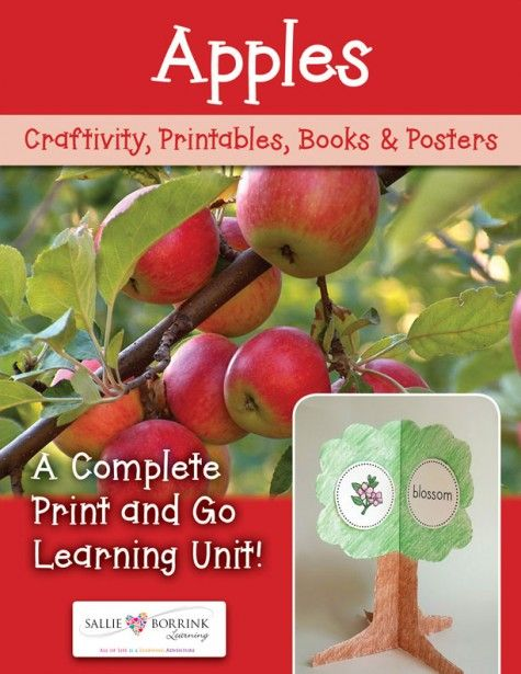 Apples Unit with Craftivity                                                                                                                                                      More