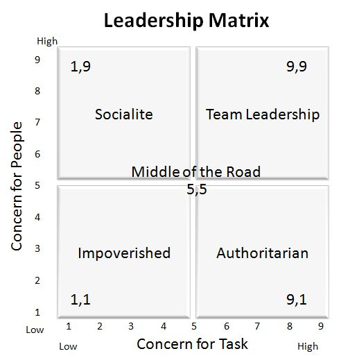 9 best PPD500 The Role of Leadership in Organizational Framework - leadership self assessment