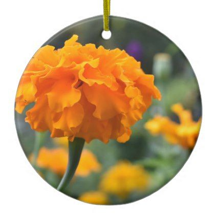 Marigold Orange Flower Nature Photography Garden Ceramic Ornament - photography picture cyo special diy