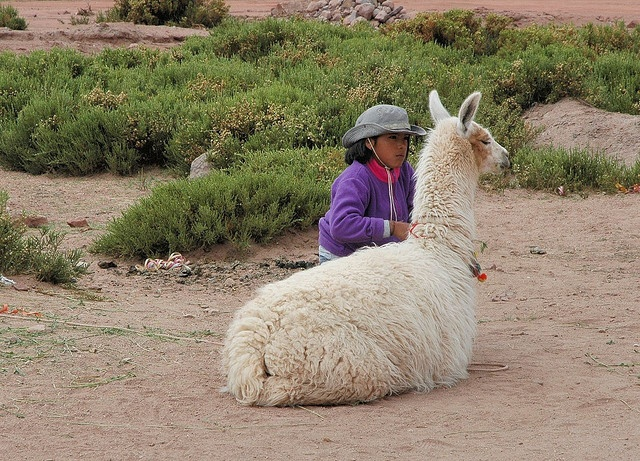 South America: Chile