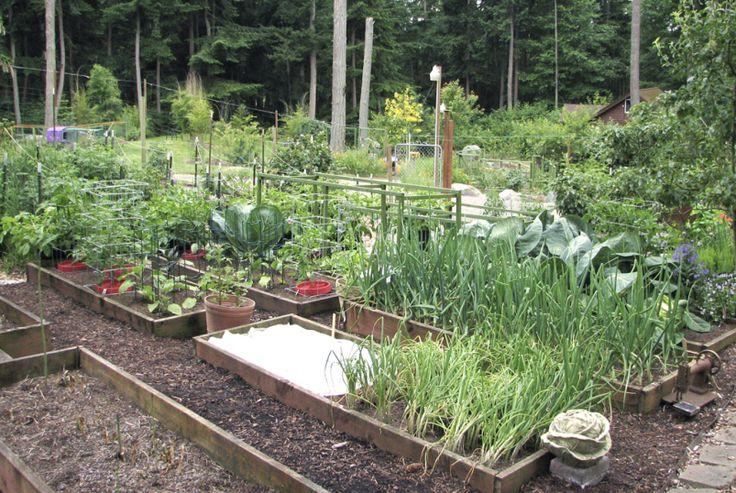 17 best images about vegetable gardens on pinterest gardens children garden and raised beds - Country vegetable garden ideas ...