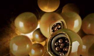 Nanocápsulas com anti-inflamatório reduzem tumor cerebral maligno em camundongos Qualquer medicamento administrado contra doenças cerebrais precisa enfrentar um escudo natural até chegar ao cérebro: a barreira hematoencefálica, uma estrutura de permeabilidade altamente seletiva que protege o sistema nervoso central de substâncias potencialmente neurotóxicas presentes no sangue. De acordo com especialistas, 98% dos medicamentos não conseguem ultrapassá-la – e aqueles que o fazem, em geral…