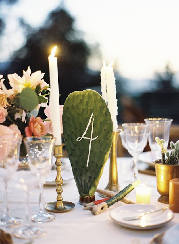 Wedding Trend Alert | Cactus Paddles | Prickly Pear Cactus | Bridal Musings Wedding Blog 2