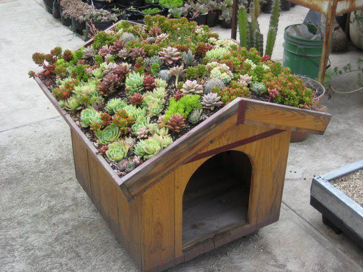 311 best rooftop gardens images on pinterest | rooftop gardens