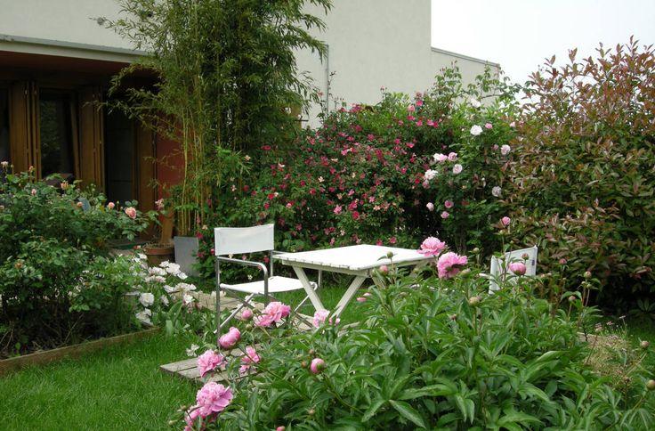 Vorresti rendere speciale il tuo piccolo giardino?…