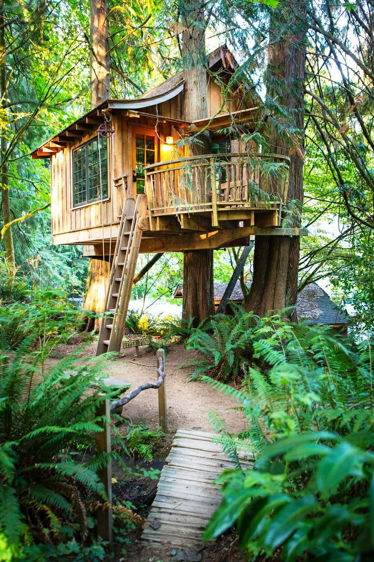 You can see the tree which this tree house castle clings to through - Treehouses You Can Rent In Washington Treehouses Of Treehouse Point Upper Pond Kaarina Pixton