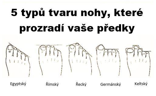 5_typů_tvaru_nohy,_které_prozradí_vaše_předky (1)