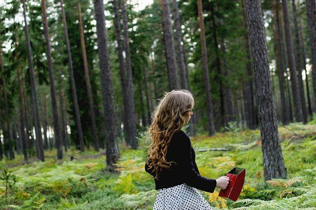 i blåbärsskogen.        http://morgonvind.se