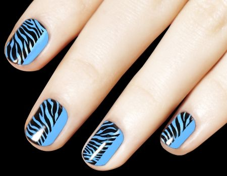 Blue Black Zebra Print Nail Art