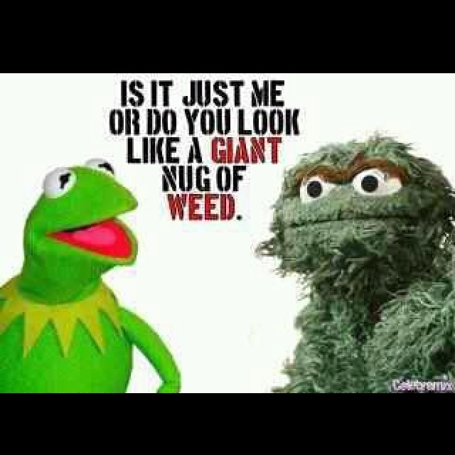 Keep Calm And Movin Right Along The Muppets: 17 Best Images About Its Not Easy Being Green... On
