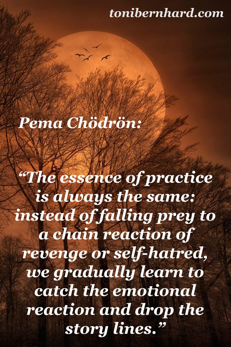 How Mindfulness And Storytelling Help >> 17 Best images about ༜ Pema Chodron ༜ on Pinterest ...