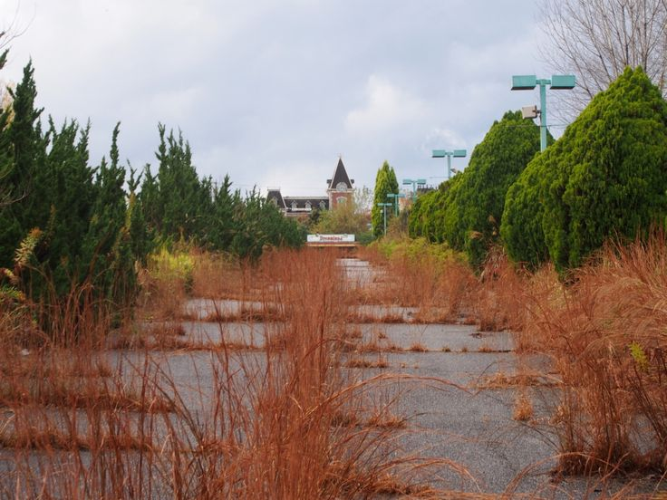 Let's get in! Check it out: Nara Dreamland Japan abandoned http://meetyouatthebridge.nl/abandoned-nara-dreamland-en/