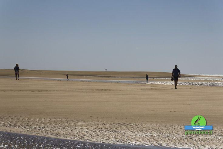 Sotavento beach in #fuerteventura