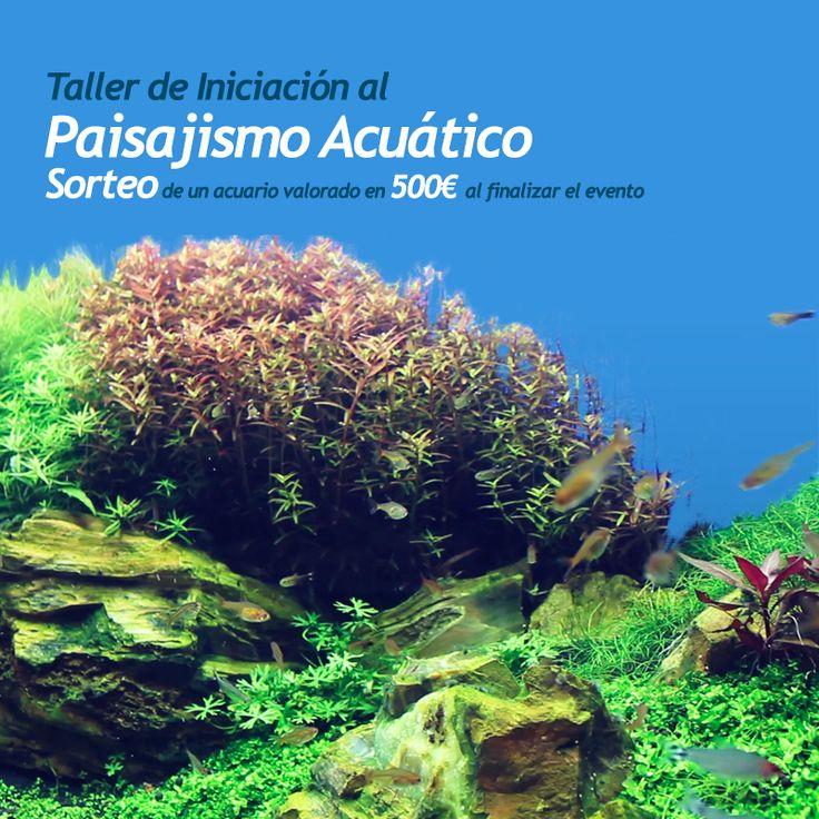 M s de 25 ideas incre bles sobre paisajismo acu tico en - Que es paisajismo ...