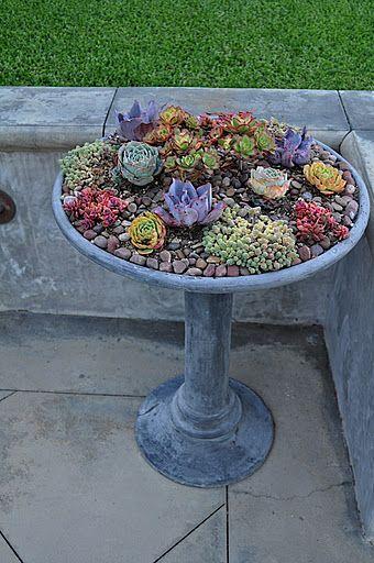 @Debbie Arruda Arruda Johnson. I love this idea... Think that recycled, cheap birdbaths made into gardens might be really fun in your yard... Plant a garden in a birdbath