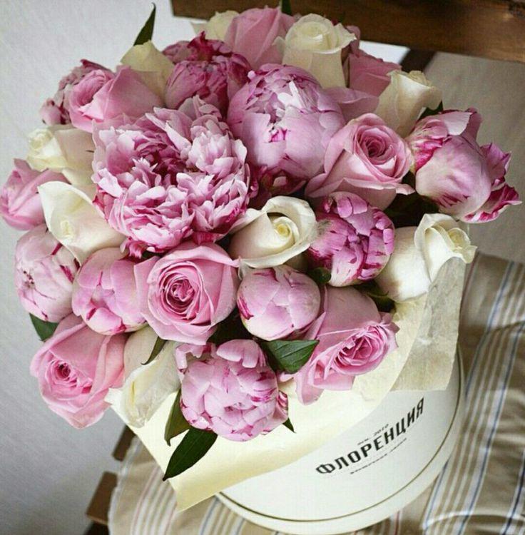 535 best FLOWER BOX 4 images on Pinterest