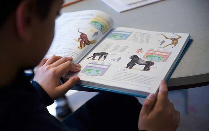 DN:s Lotta Olsson och läsambassadörenJohanna Lindbäck, listar tio knep för att få barnen att läsa mer.
