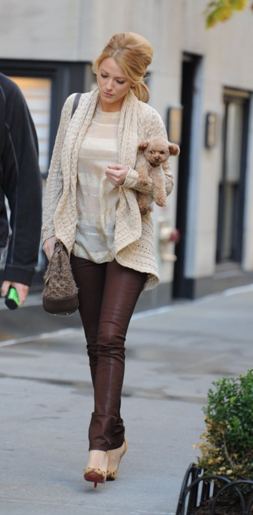 I love Blake Lively's J Brand skinny jeans and her Donna Karan cardigan but most of all I love her cute dog Penny