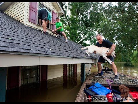 Water rescue in East Baton Rouge Parish by off-duty Lafourche Sheriff deputies after historic floods - YouTube
