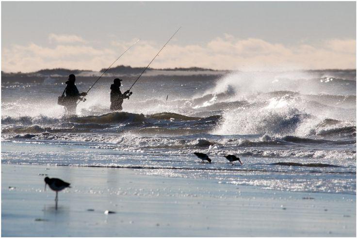 21 best long island fishing images on pinterest long for Fishing long island