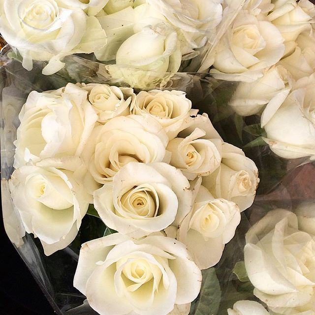On this drizzly autumn  day in Melbourne these white roses would have been a lovely addition   #whiteroses  #loveit #roses #brightenupyourday #supportlocal #shoplocal #florist #instagood #instaflowers #instaroses #beautiful #special #melbourne #melbournelifelovetravel #bayside #flowerpower #peace #love #special