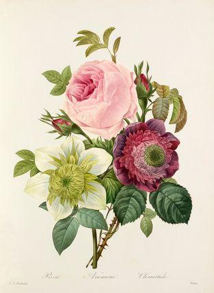 Botanical wonders and floral trends   Blog   Rachel Lucie Handmade Silver Jewellery
