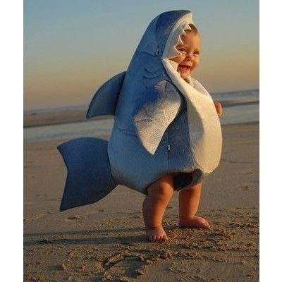 I need to reproduce, purely so I can put my baby in this shark costume.