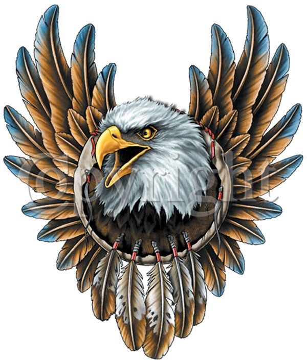 Eagle Hawk Bird Flying Wild Animal Choppers Lady Rider Biker Tatoo Jacket Patch