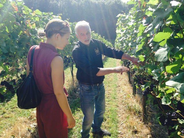 Jenneke & Leonie kwamen, zagen en dronken wijn uit Zuid-Limburg. Ze treden een dag in de voetsporen van een echte Zuid-Limburgse wijngaardenier op Wijngoed fromberg en leerden wijn proeven bij Vino Vidi Vici in Valkenburg.