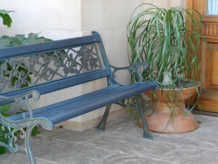 Nolina en maceta en patio de entrada puerta principal - Puertas entrada principal ...
