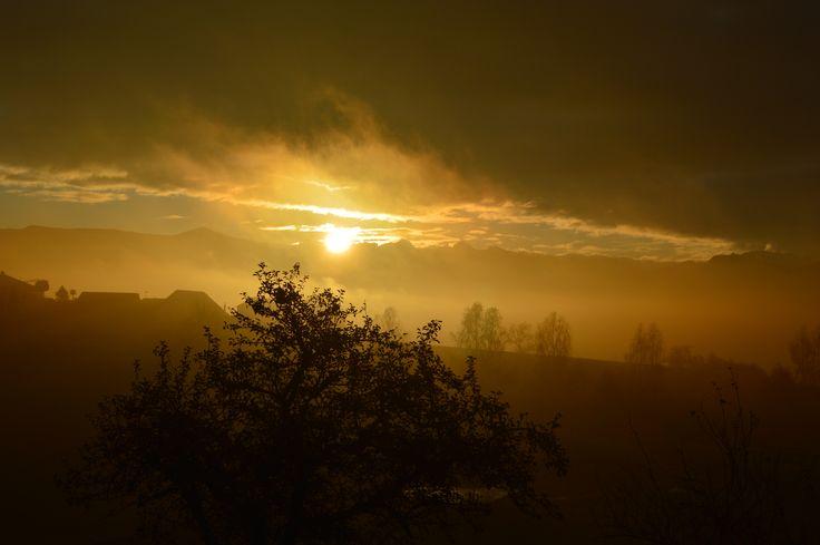 matin brumeux..mystérieux