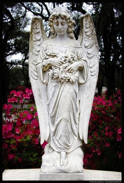 ༺/༻  Bonaventure Cemetery, Savannah, GA