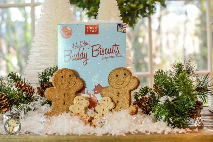 Yummy Holiday Gingerbread Buddy Biscuits by #CloudStar – The Story | #ItsaLabThing #Labradors