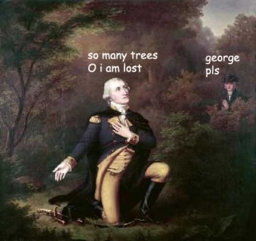 adventures of George Washington