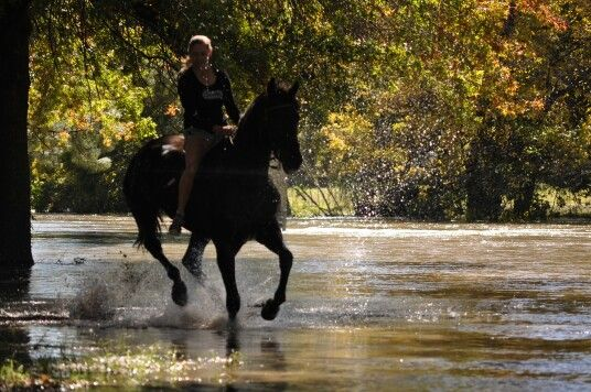 Rider through the river with my horse just after some wonderful rain