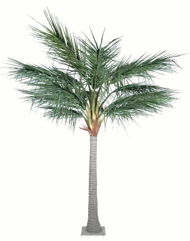 Les 112 meilleures images du tableau belles plantes for Vente palmier artificiel