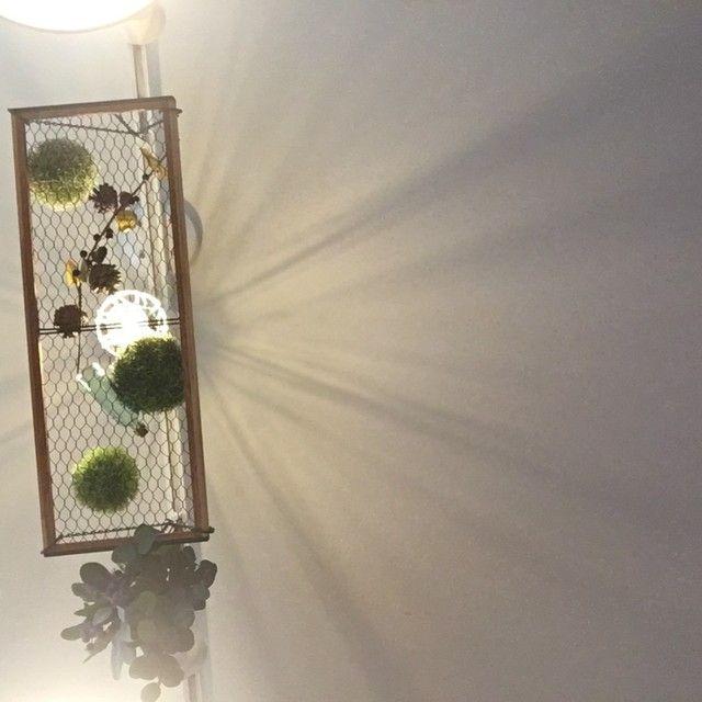 セリアの ワイヤーメッシュラティス で 簡単ハンギングラック インテリア ワイヤー ワイヤーメッシュ セリア