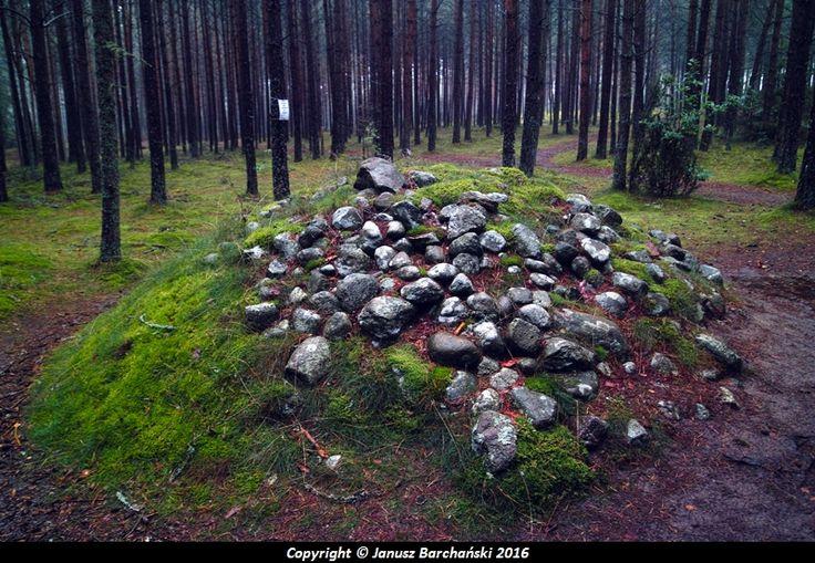 Węsiory kamienne kręgi