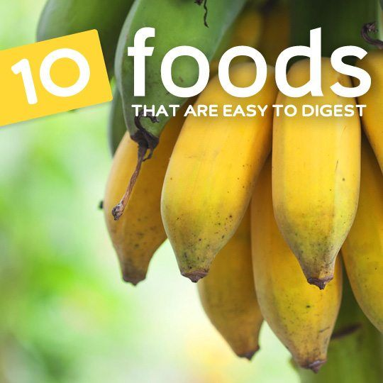 Give your digestive system a break and avoid stomach upset with these easily digestible foods…
