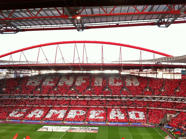 Estádio Do Sport Lisboa E Benfica em Lisboa, Lisboa